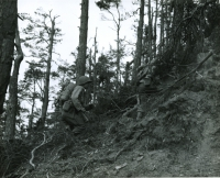 Nisei soldiers fight in rough terrain in the Vosges Mountains [U.S. Army Signal Corps]