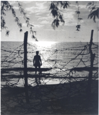 Barbed wire covers a Hawaiian beach after the bombing of Pearl Harbor, 1942 [Courtesy of Ruth Oian Pratt, Bishop Museum]
