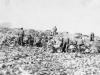 Soldiers rest on a Cassino hillside. [Courtesy of Mary Hamasaki]