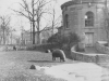 Taken Nov. 20, 1942 at Bronz Zoo, New York City.  A baby hippo. Not true all dolled up.  [Courtesy of Jan Nadamoto]