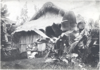 Mother and child outside their home in Hilo, Hawaii.  The roof is made from pili grass and sugar can leaves and the frame is made from bamboo, late 1800s [Hawaii State Archives]